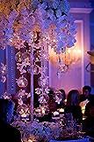 Ecosides Set da 100 8 cm Porta tealight sospesi Globo in Vetro Globo vegetale Terrario, Aria pianta Tea Light Portacandele Decorazioni per centrotavola per Feste di Nozze, con 2 Fori Laterali