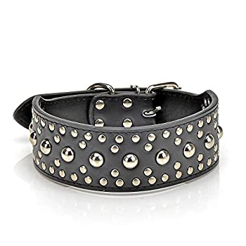 Best leather studded dog collar Reviews