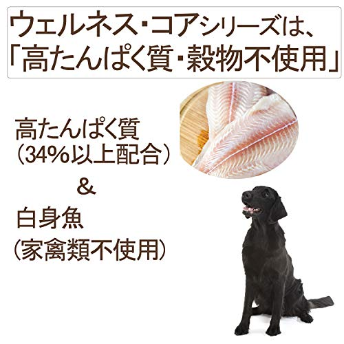 ウェルネスドッグフード成犬用(1-6歳)コア(穀物不使用・高たんぱく質)オーシャンフィッシュ(白身魚)1.8kg