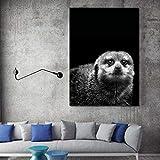 SADHAF Lienzo de imagen de animal salvaje en blanco y negro lindo póster de impresión de nutria Diseño de arte pintura decorativa pared A3 50x70cm