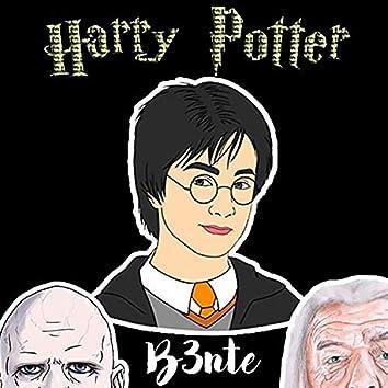 Harry Potter Bounce