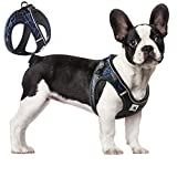 ACKERPET Comfort Step in Dog Harness Easy to Put on Small Dog Harness...