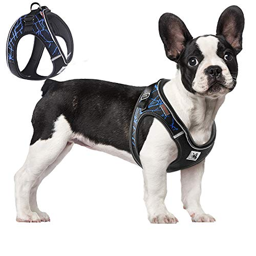 ACKERPET Comfort Step in Dog Harness Easy to Put on Small Dog Harness Choke Free Adjustable Pet Vest No Pull Outdoor Sport Vest Harness Reflective Soft Padded Vest for Small Medium Dogs(M, Blue)