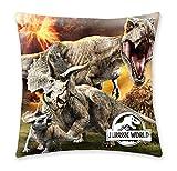 Halantex Zierkissen 40x40 Jurassic Word