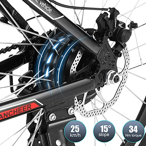E-Mountainbike BIKFUN 26 Zoll Bild 3*