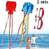 FANPING 2pcs / Set cometas for niños cometas grandes pulpo de la cometa for niños con la manija de la cadena por un parque de la playa cometas for niños y adultos truco cometas al aire libre Diversión