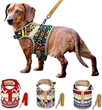 Best dachshund collars and harnesses Reviews