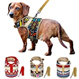 Muttitude Dog Harness & Leash Set, World Designs Collection (Large, Pueblo)