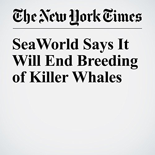 SeaWorld Says It Will End Breeding of Killer Whales audiobook cover art
