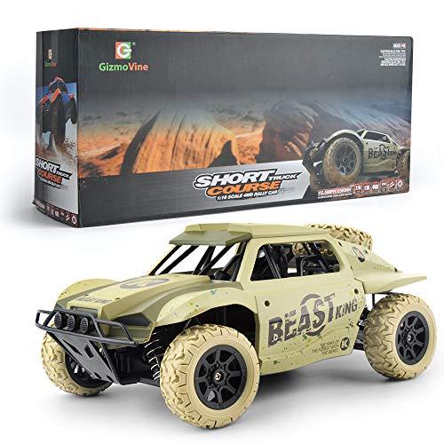 Auto RC 1/18 4WD 2.4 GHz Macchine Telecomandati Elettrica RC Camion Automobile Telecomandata per Bambini 4x4 - con Telecomando
