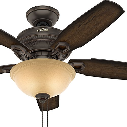 Hunter Fan 44 inch Traditional Ceiling Fan - Bowl LED light kit with Tea Stain Glass (Renewed)