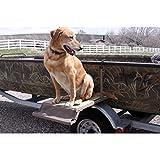 Dog Boat Ladder/Platform
