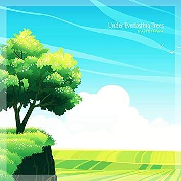 Under Everlasting Trees