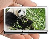 Estuche para tarjetas de visita, máscara Panda gigante Estuche para tarjetas de visita portador de tarjetas (acero inoxidable)