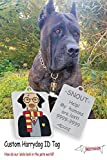 Snout Fashion Potterdog Plaque d'identification en Acier Inoxydable - Harry Potter dans Le Monde des Chiens Personnalisée