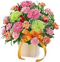 【母の日ギフト】カーネーションのミックスアレンジメント mt01az-521319 花キューピット 女性 お母さん ママ 母 祖母 誕生日 プレゼント カーネーション