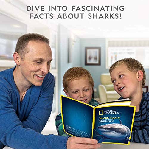 Product Image 6: National Geographic Shark Tooth Dig Kit, Excavate 3 Real Shark Fossils Including Sand Tiger, Otodus and Crow Shark – Great Science Gift for Marine Biology Enthusiasts of Any Age