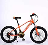 HYCy Bicicleta De Montaña para Niños Fat Tire,Beach Snow Bike,Estudiante Juvenil City Road Racing Bike,Bicicleta Ligera con Cuadro De Acero De Alto CarbonoRuedas De 20 Pulgadas 21 Velocidades