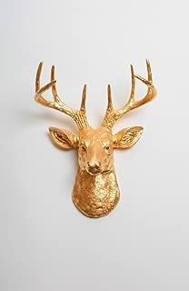 White Faux Taxidermy Faux Deer Head - The Mini Franklin Miniature Metallic Gold Resin Deer Head | Stag Deer Head Wall Decor | Animal Head Wall Hanging Sculpture | Faux Animal Mounts