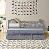 Solid Wood Mate's & Captain's Bed Twin with Storage Drawers and Trundle (Gray)