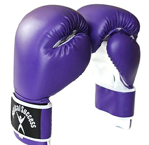 Physical Success Purple Boxing Gloves 12oz