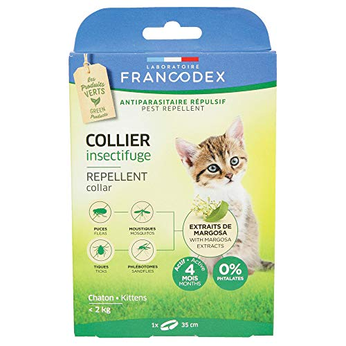 Francodex Collier insectifuge Chaton