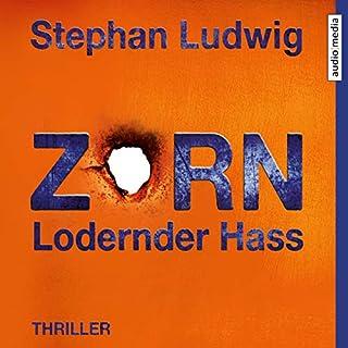 Zorn - Lodernder Hass Titelbild