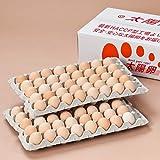 太陽卵 業務用 有名ホテル使用 ピンク卵 Mサイズ 90個入り 通常便