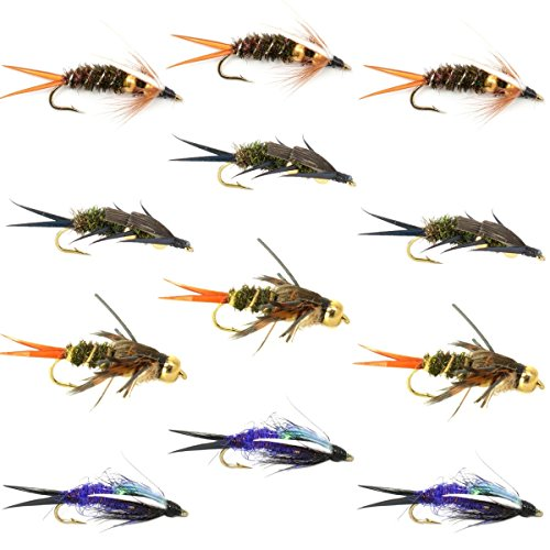 The Fly Fishing Place Double Bead Nymph Collection 1 Dozen Weighted Nymph Fly Fishing Flies Set of 12 Flies Hook Size 10