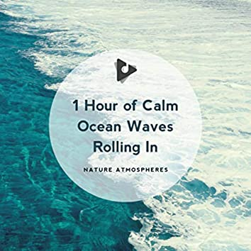 1 Hour of Calm Ocean Waves Rolling In