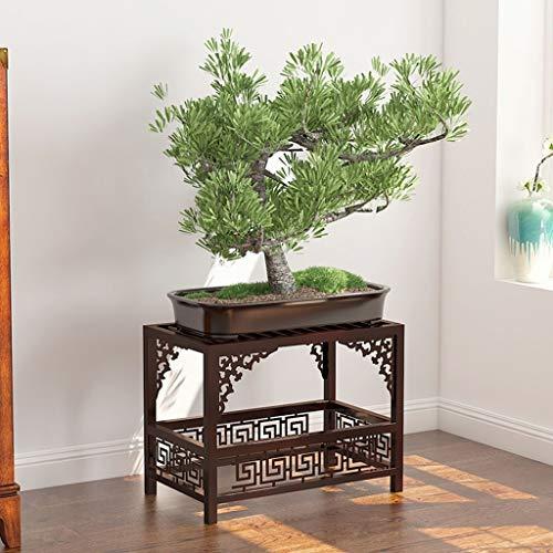 WXYXG Soporte De Flor De Hierro Forjado Estante De La Sala De Estar De Pie Carnoso Estante De Arroz Verde Cuadrado Interior Simple Bonsai Marco (Color : Bronze, Size : 50cm×45cm)