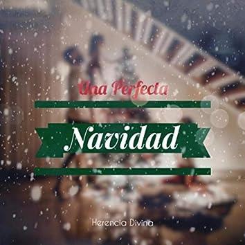 Una Perfecta Navidad