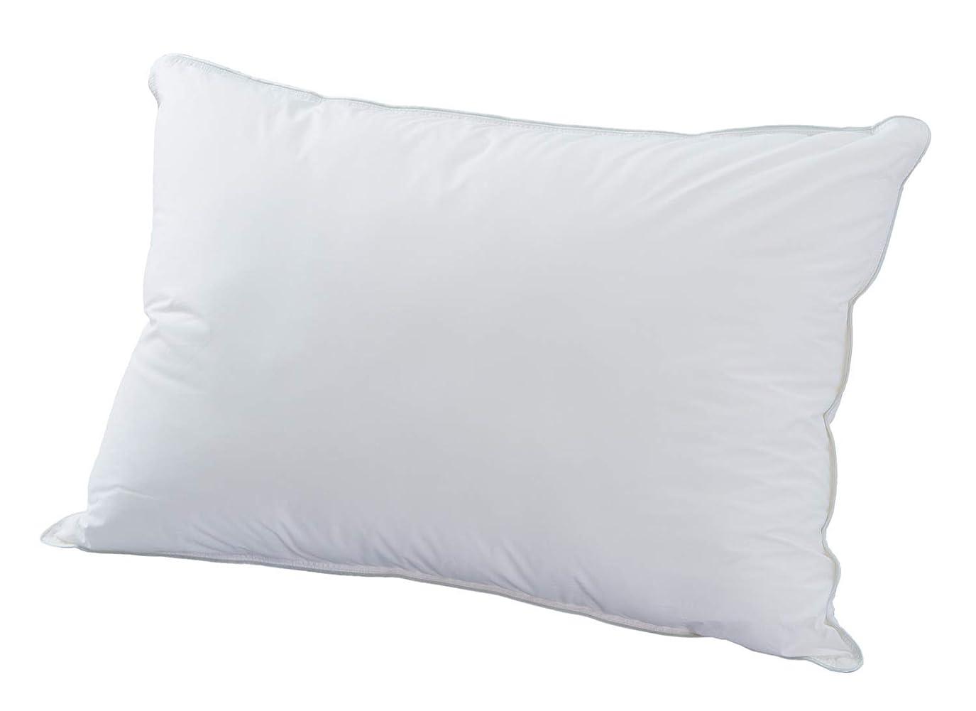 やけどじゃない寄稿者Danfill 枕 ホワイト 45x65cm フィベールピロー プレゼント光触媒抗菌防臭カバー付き JPA021/AKS12