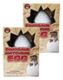 2 Pack Xtra LG Hatching Dinosaur Eggs Huge Dino Inside Jumbo Extra Large Eggs Ginormous Growing Dinos Collect All 4
