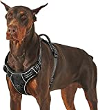 Best Dog Harnesses - Lesure No Pull Dog Harness Large - Front Review