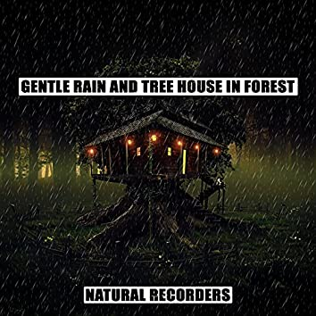 Gentle Rain and Tree House in Forest