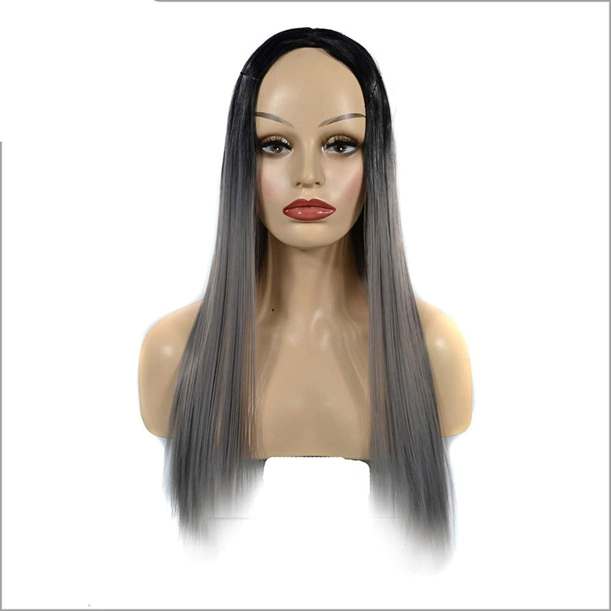 HOHYLLYA ブラックグラデーションシルバーグレーかつらオンブルストレートロングウィッグ女性のための中部かつらダークルーツ耐熱ウィッグパーティーかつら (色 : Silver Grey, サイズ : 60cm)