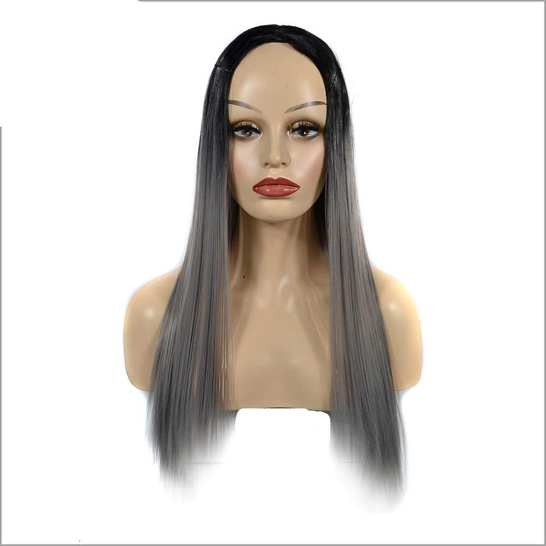 透ける委員会拡張YESONEEP ブラックグラデーションシルバーグレーかつらオンブルストレートロングウィッグ女性のための中部かつらダークルーツ耐熱ウィッグパーティーかつら (Color : Silver Grey, サイズ : 60cm)