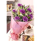 世界初、こんな色見たことない!紫カーネーションが輝く花束 幸せを願うカーネーションムーンダスト花束(カーネーションギフト花束)