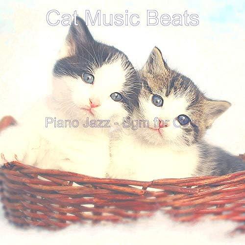 Cat Music Beats