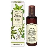 L'Erbolario Spray Capelli Purifica, rinfresca e profuma Con estratto di Alloro e oli essenziali di Coriandolo, Menta e Tea tree 100 ml