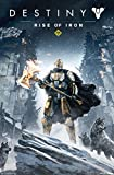 Trends International Destiny Rise of Iron Wall Poster 22.375' x 34'