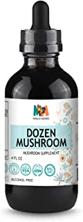 Dozen Mushroom Immune Support Tincture 4 fl oz Alcohol-Free Extract (Agaricus, Chaga, Maitake, Reishi, Cordyceps, Enokitak...