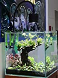 Lominie LED Aquarium Light, Full Spectrum Saltwater Freshwater Fish Tank Light for Coral, Reef, Planted Nano Aquarium Tank (F20 Freshwater)