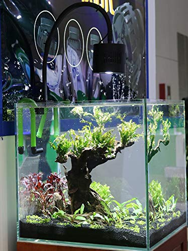 Lominie LED Aquarium Light, Freshwater Planted Tank Light Asta 120 Clamp Clip Lamp for Refugium Algae Fish Tank 24inch with Gooseneck