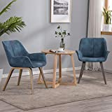 YEEFY Modern Living Room Chairs with arms Blue Accent Chairs Set of 2 (Blue)