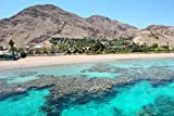 Coral Reef In The Gulf Of Eilat Red Sea Israel Asia Home