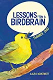 Lessons from a Birdbrain: Summer, Ohio