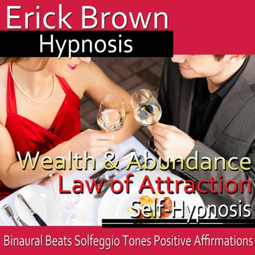 Wealth and Abundance Law of Attraction audiobook cover art