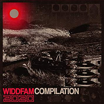 The WiddFam 2020 Compilation